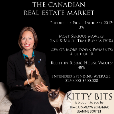 Kitty Bits and the Canadian Real Estate Market 2013