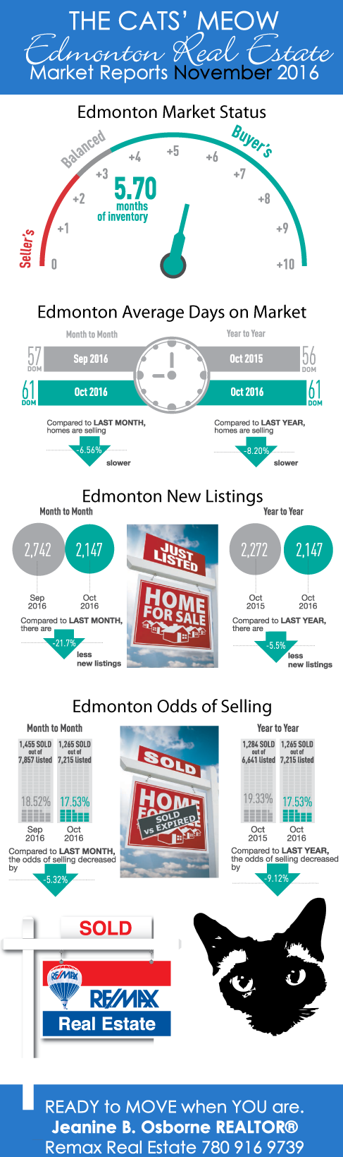 Edmonton Real Estate Market Reports November 2016